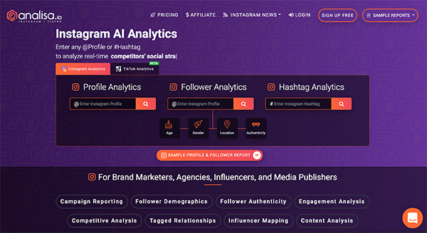 Analisa Instagram AI analytics