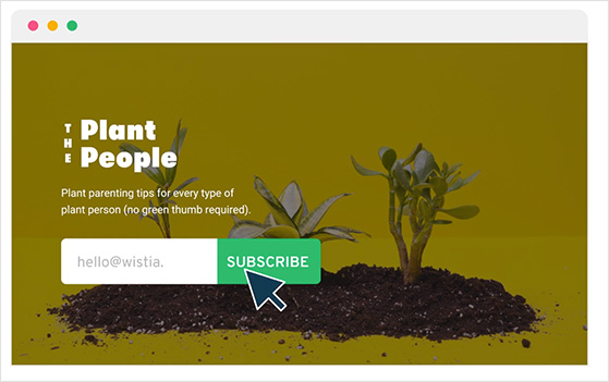 Add a signup form within your videos to generate leads