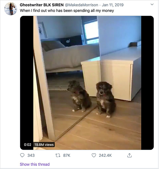 Funny viral twitter video