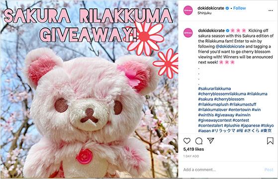 Seasonal Instagram giveaway examples