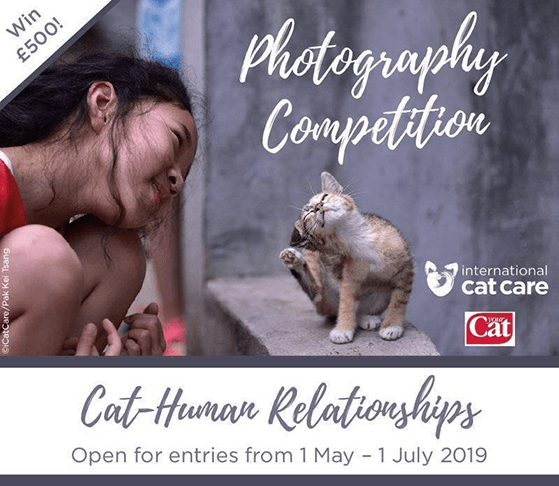 Charity photography contest ideas