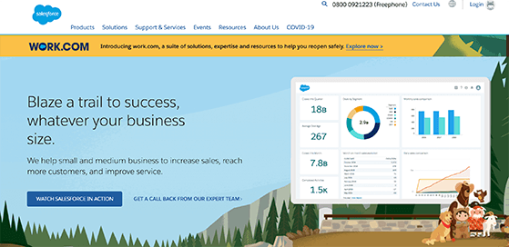 salesforce lead management solution