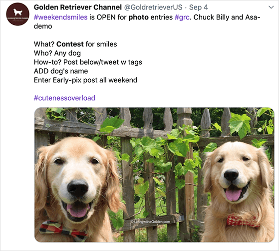 twitter giveaway ideas: photo contest