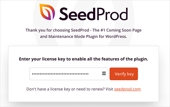 Enter your SeedProd license key