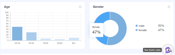 MonsterInsights demographics report
